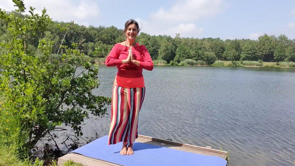 Diane Zuiderwijk Thuisreis Qigong Flow